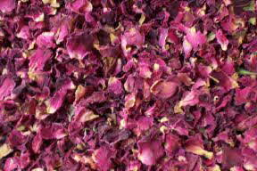 buy rose petals burgundy